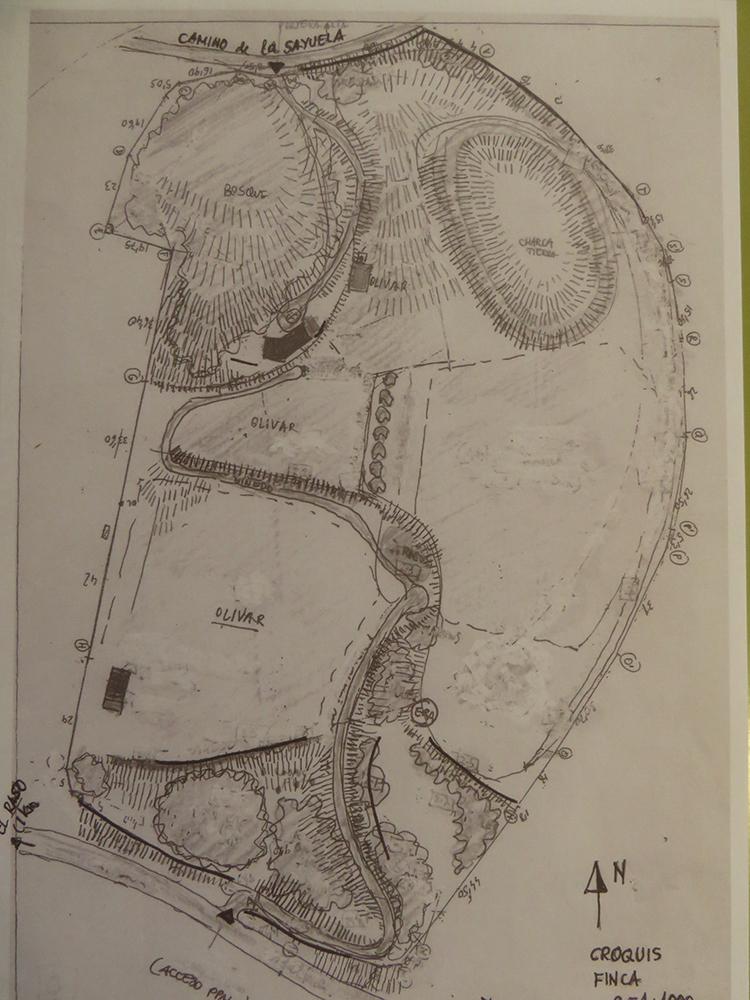 Figura 3. Plano 1 – Morfología del terreno (izquierda). En este croquis se representan los accesos rodados exteriores (carretera de Candeleda a El Raso, Camino de la Sayuela),  los caminos interiores, los muros de contención de piedra (líneas negras gruesas), los taludes y zonas de pendiente apreciable (trazos paralelos cortos en sentido perpendicular a las curvas de nivel), las principales masas de arbolado de porte, las terrazas de cultivo de inclinación moderada y las construcciones principales. Figura 4. Plano 2. Unidades de cultivo y vegetación iniciales (derecha) Terrazas de olivos existentes (1, 2, 2bis); Antiguos campos de labor, Terraza alta (3); Bosquete autóctono Sur (4); Vaguada baja, zarzal (5); Manchas de bosque autóctono  a la derecha del camino de subida a la casa (6); Bosque Norte, rebollos, alcornoques y pinos (7); Vaguada alta, pradera estacional (8); Charca grande de tierra, construida c 1996 (9).