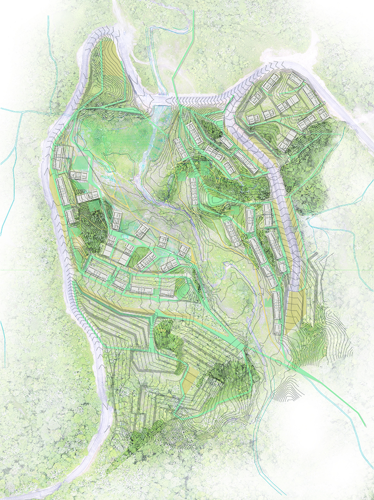 Figura 11. Ordenación propuesta y relación con la topografía, vegetación y red hídrica. Fuente: Landlab.