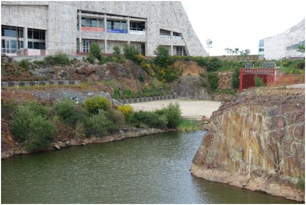 Figura 11. El lago – vegetación espontánea. Xardín Literario. Foto: Isabel Aguirre.