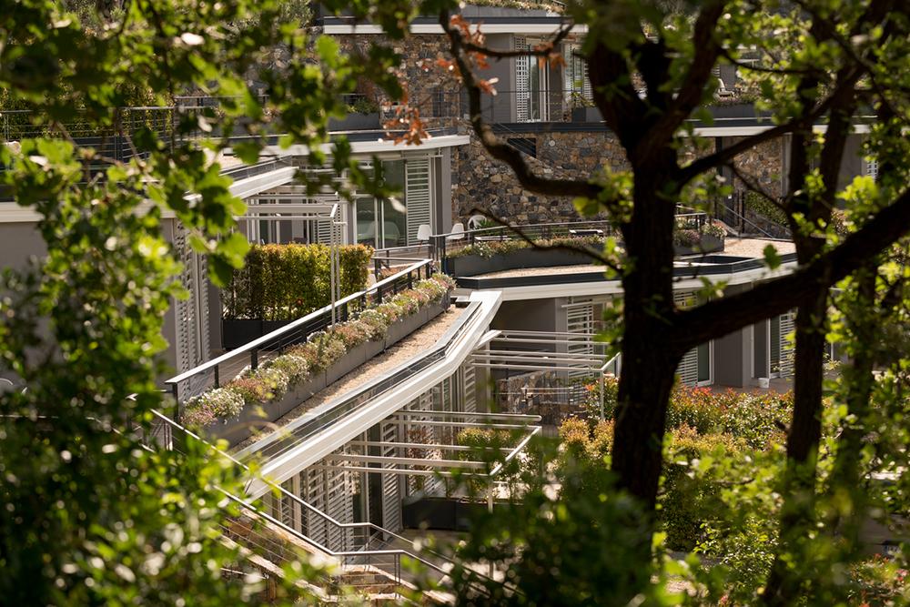 Figura 16. Vista de las viviendas entre la vegetación. Foto: Moreno Maggi, cortesía de studiorossi + secco