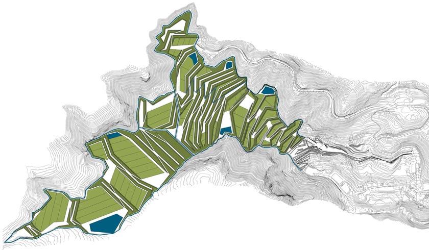Figura 21: planta general del proyecto. Fases 1, 2, 3 y 4