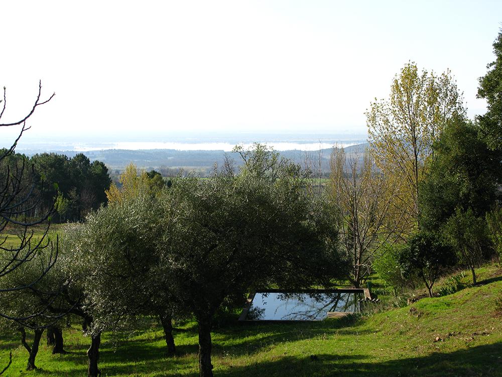Figura 31. La alberca de riego y baño entre olivos, arces y alcornoques