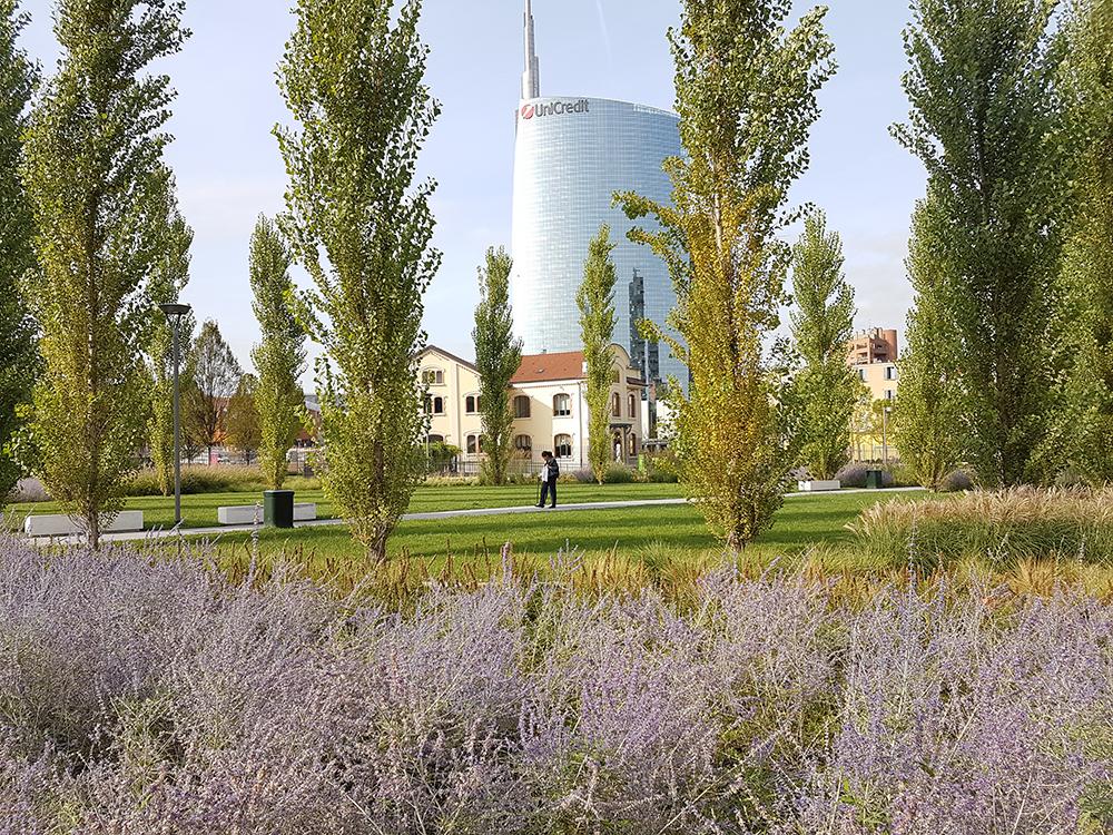 Figura 23. Vista del parque. ©InsideOutside