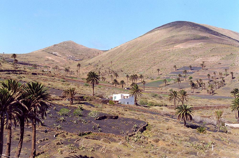 Figura 2. La obra de acondicionamiento del terreno para su aprovechamiento agrícola ha producido un paisaje de original belleza.