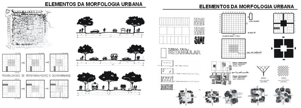 Figura 5: Mapa de la Cascarilla. Fuente: Archivo Histórico de la ciudad de Loja