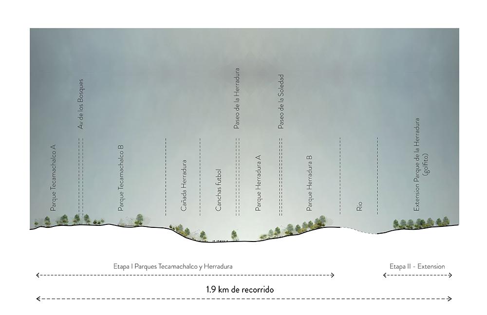 Figura 7. Sección esquemática