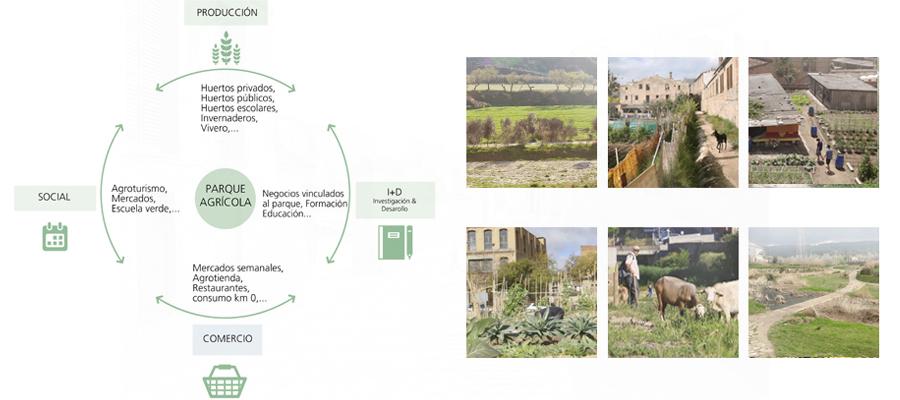 Figura 8: Propuesta. El ciclo agroecológico.
