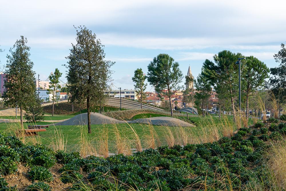 Figura 9. Ejemplos de vegetación empleada en el parque.