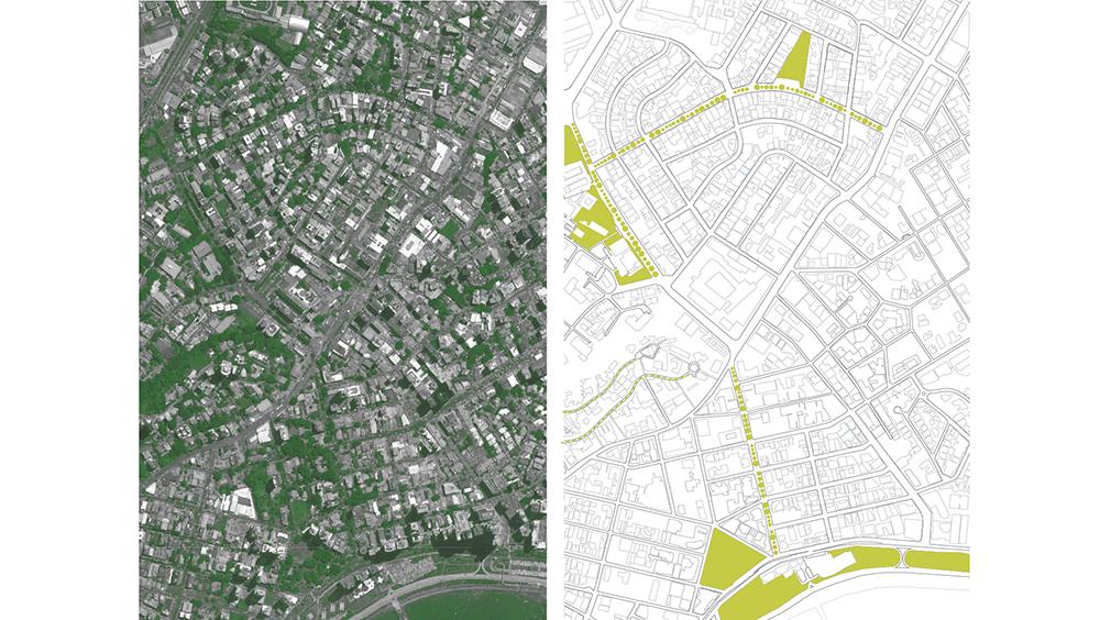 Figura 18. Comparativa de imagen extraída de Google Earth y diagrama con la vegetación más importante para la misma región. Infografía realizada por Forzacreativa.