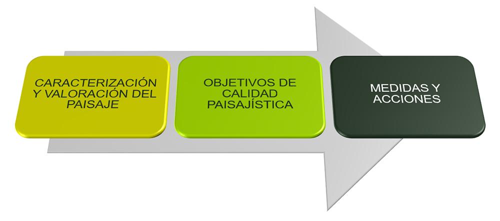 Figura 23: Resumen del proceso metodológico. Elaboración propia ARAUDI SLP