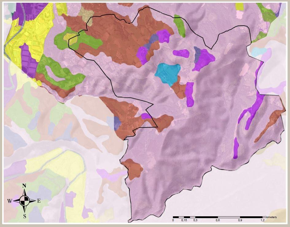 """Figuras 6 y 7. Ejemplo de capas del prediagnóstico técnico del GIS del Plan. A la izquierda """"Capacidad Agrológica"""", a la derecha, """"Usos del Suelo"""". Elaboración propia ARAUDI SLP"""