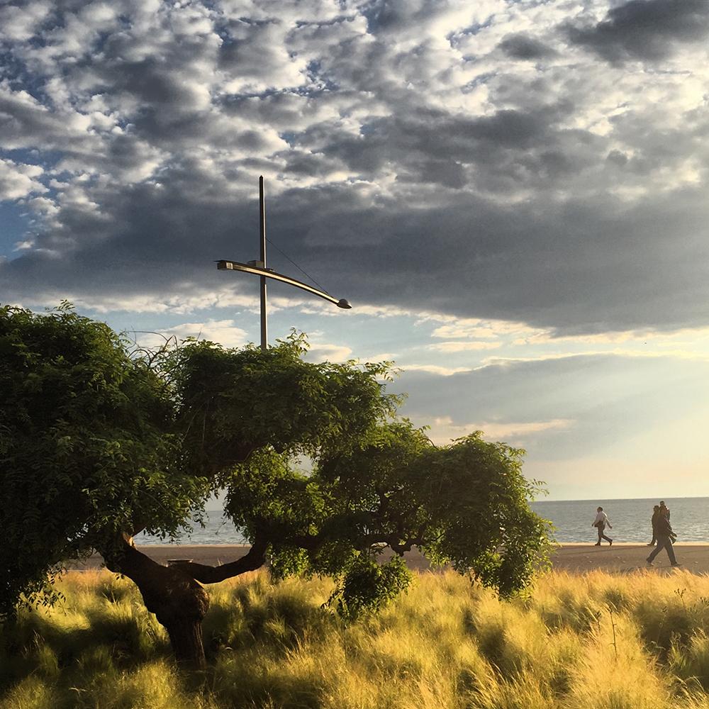 Figura 13. Foto desde el interior del jardín del sol del mediodía hacia el mar. Foto de Aggeliki Sapika.