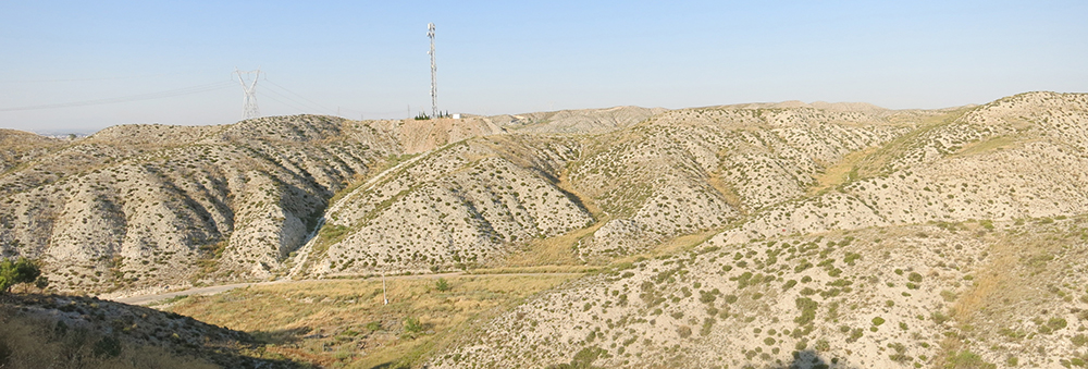 Figura 1. Estepa sur de Zaragoza. (Fuente: Atalaya)