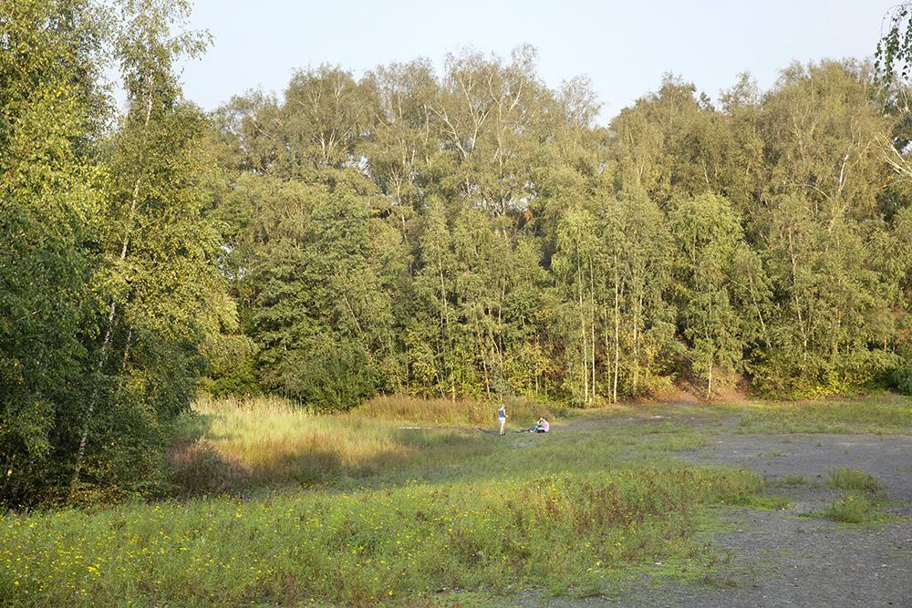 Figura 1. Un paisaje modelado a base de la sobrecarga, un antiguo estanque de sedimentación de restos de carbón en el centro del sitio Patrimonio Mundial de la UNESCO, entre el área de la mina de carbón y la planta de coque, conforman el núcleo y el centro del parque actual. (©Claudia Dreyße, 2014)