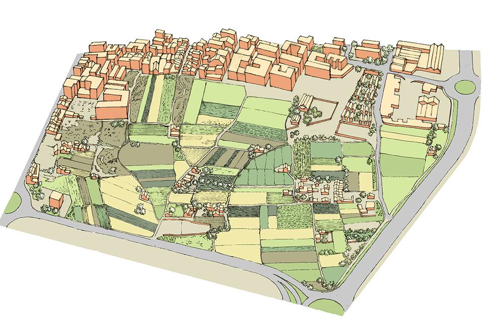Figura 11. Ilustración de la unidad de paisaje de Sant Jordi. Producción propia